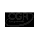 Logo CGR-international